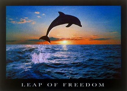Leap of freedom